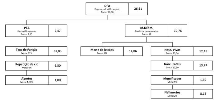 Gestão da Informação - Nutrição Animal - Agroceres Multimix