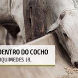 DDG - Nutrição Animal - Agroceres Multimix
