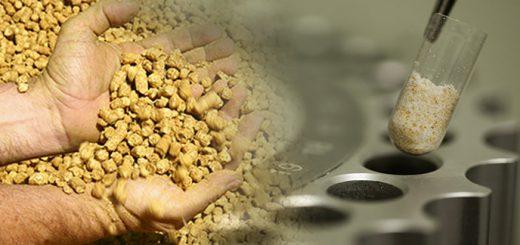 Amostragem | Nutrição Animal - Agroceres Multimix