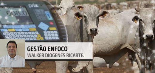 Balança na Fazenda | Nutrição Animal - Agroceres Multimix