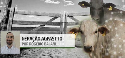 Genética | Nutrição Animal - Agroceres Multimix