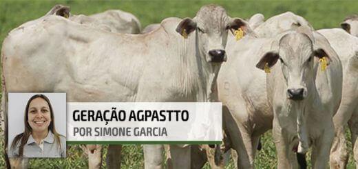 Taxa de Lotação | Nutrição Animal - Agroceres Multimix