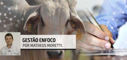 Análise SWOT | Nutrição Animal - Agroceres Multimix