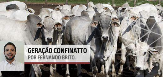 Matéria Seca | Nutrição Animal - Agroceres Multimix