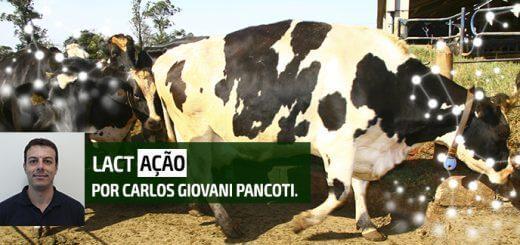 Escore de Locomoção | Nutrição Animal - Agroceres Multimix
