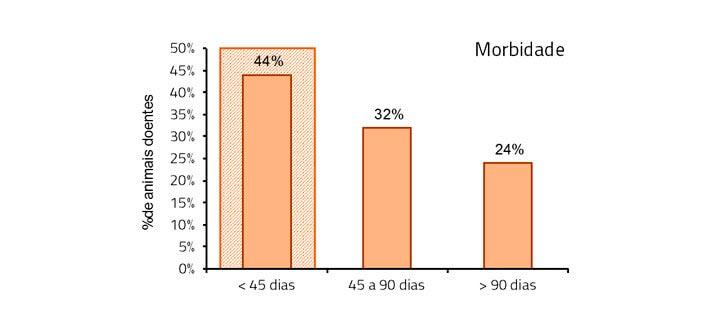 Morbidade - Período de Adaptação