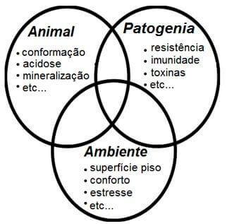 Laminite - Nutrição Animal Agroceres Multimix