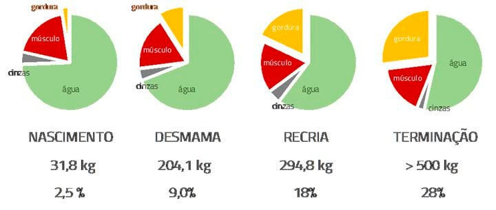 Suplementação - Agroceres Multimix Nutrição Animal