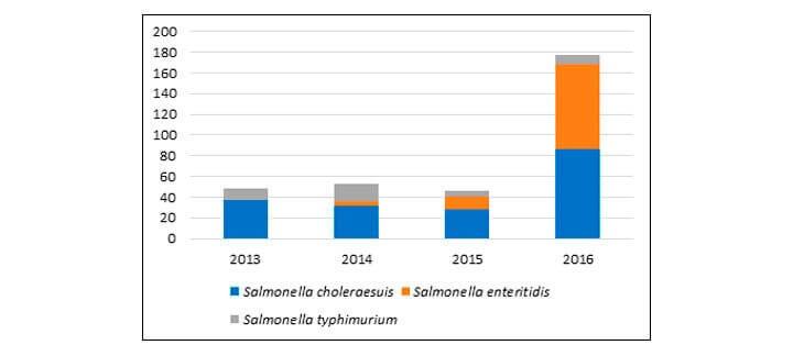 Salmonelose | Nutrição Animal - Agroceres Multimix
