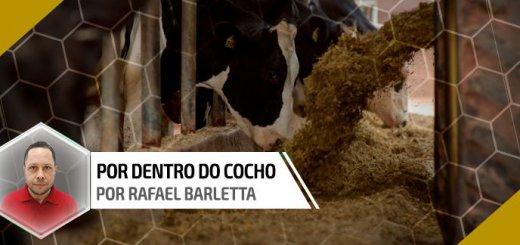 Grão de soja cru e integral na alimentação de vacas leiteiras