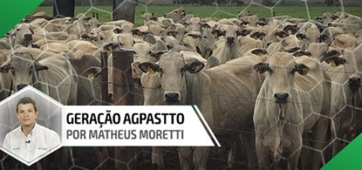 Confinamento - Nutrição Animal Agroceres Multimix
