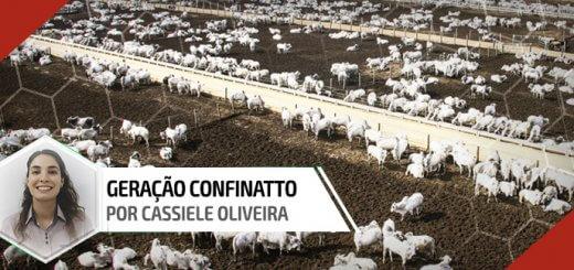 Evolução - Nutrição Animal | Agroceres Multimix