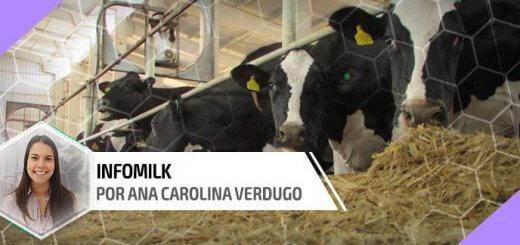 Tamponantes na nutrição de vacas leiteiras - Nutrição Animal