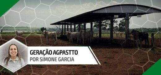 """Suplementação no período das águas"""", a imagem mostra o cocho coberto com alguns bois e um título escrito Geração Agpastto """"Simone Garcia""""."""