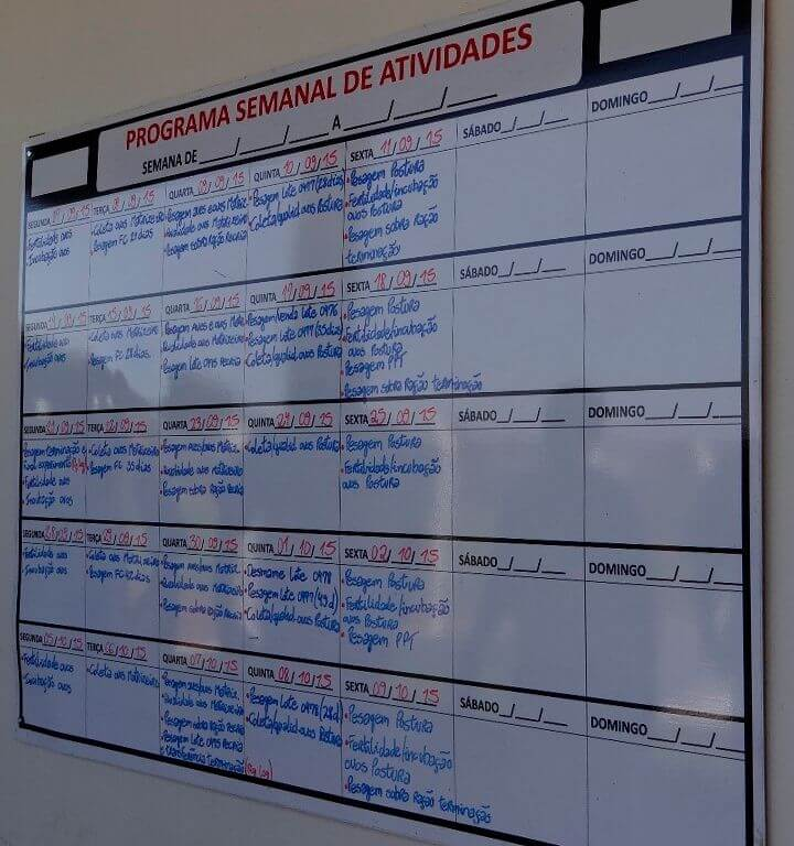 A minha mostra uma lousa branca com anotações do programa semana de atividades de uma empresa.