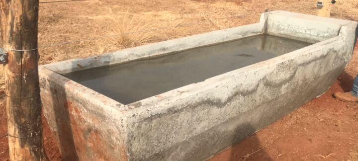 água limpa: a imagem está mostrando um bebedouro com água suja